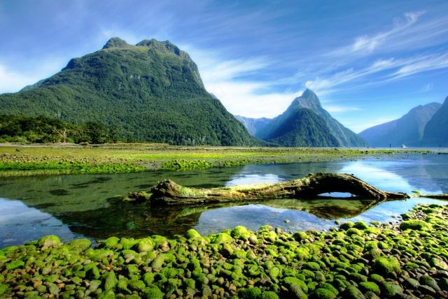 Neuseeland-shutterstock_39030727
